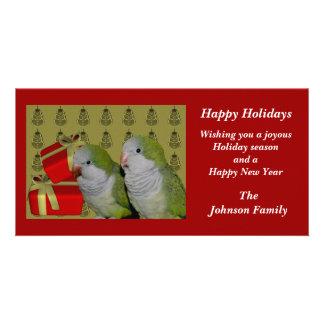 Quaker Parrots Animal Christmas Holiday Card