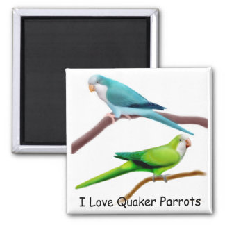 Quaker Parrots Magnet