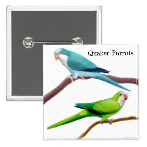 Quaker Parrots Pin