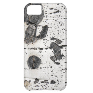 Quaking Aspen Bark Close Up Photograph Case For iPhone 5C