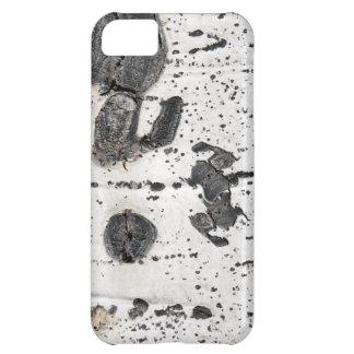 Quaking Aspen Bark Close Up Photograph Case For iPhone 5C