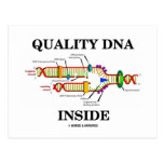 Quality DNA Inside (DNA Replication) Post Card