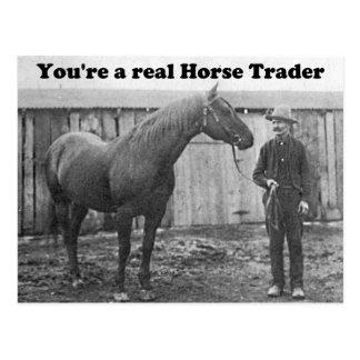Quarter Horse and Horse Trader Vintage Photo Postcards