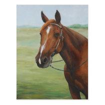 Quarter Horse Animal Art Postcard