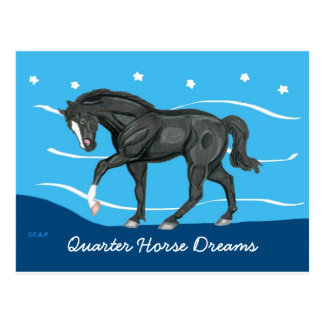 Quarter Horse Dreams Postcard