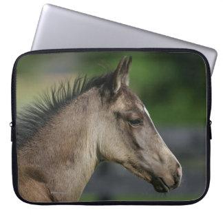 Quarter Horse Foal Headshot Laptop Sleeve