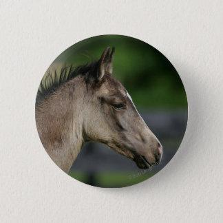 Quarter Horse Foal Headshot Pinback Button