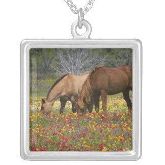 Quarter Horse in field of wildflowers near Cuero Silver Plated Necklace