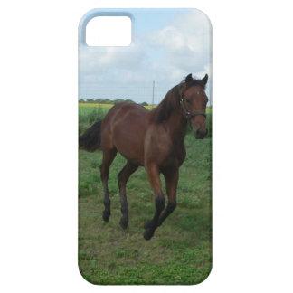 Quarter Horse iPhone SE/5/5s Case
