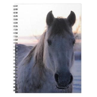 Quarter Horse Notebook