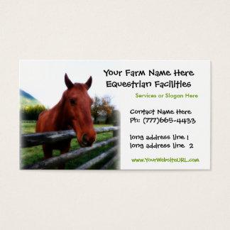 Quarter Horse Photo for Equestrian Services Business Card