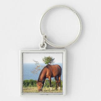 Quarter Horse Photo Keychain