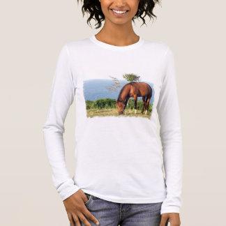 Quarter Horse Photo Long Sleeve T-Shirt