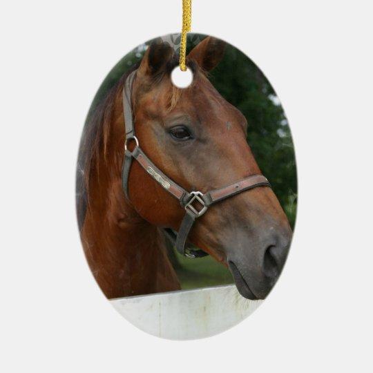 Quarter Horse Photo Ornament