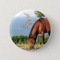 Quarter Horse Photo Round Pin