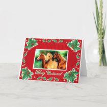 Quarter Horse Portrait Blank Christmas Card