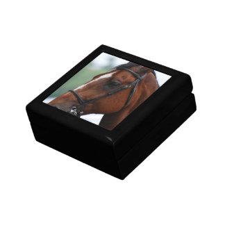 Quarter Horse Profile Gift Box