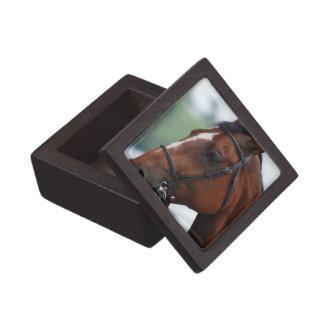 Quarter Horse Profile Premium Gift Box