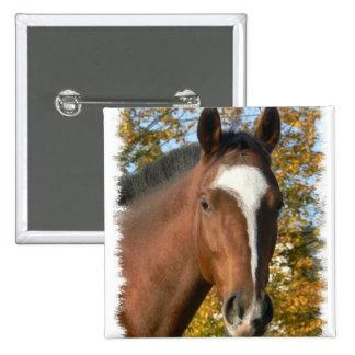 Quarter Horse Square Pin