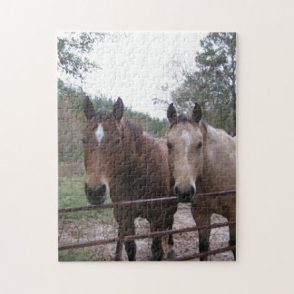 Quarter Horses Standing by the Gate Jigsaw Puzzle