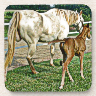 Quarter Pony Mare and Foal Art Gifts Coaster
