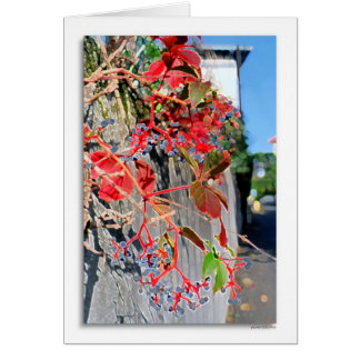 quartier Jules Ferry Greeting Cards