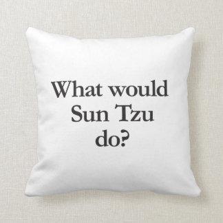 qué asolearía tzu haga almohada