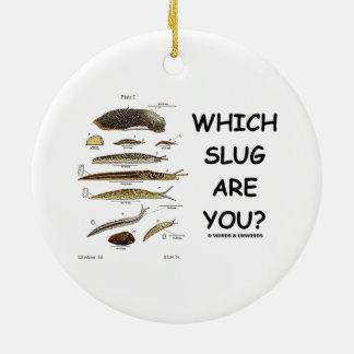 ¿Qué barra es usted? (Diversos tipos de barras) Ornamentos De Reyes