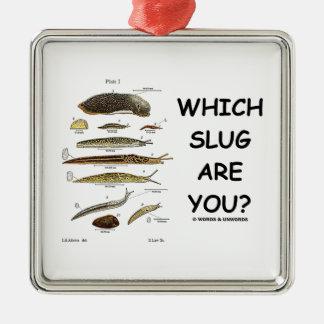 ¿Qué barra es usted? (Diversos tipos de barras) Ornamento De Reyes Magos