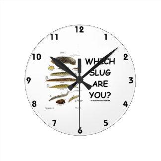 ¿Qué barra es usted? (Diversos tipos de barras) Relojes