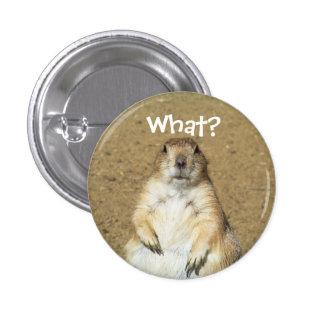 """""""Qué?"""" Botón del perro de las praderas Pin Redondo De 1 Pulgada"""