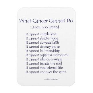 Qué cáncer no puede hacer el imán del poema el te