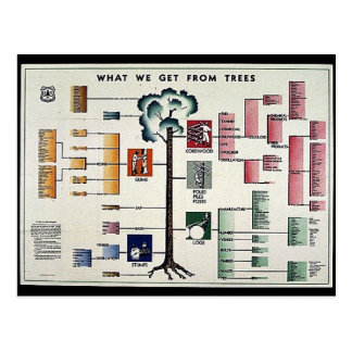 Qué conseguimos de árboles postales