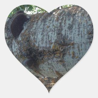Qué crece en árboles calcomania de corazon personalizadas