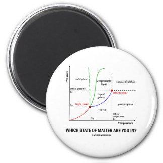 ¿Qué declaraciones está usted adentro? (Química) Imán Para Frigorífico