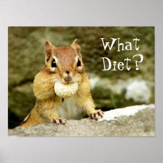 ¿Qué dieta Poster del Chipmunk