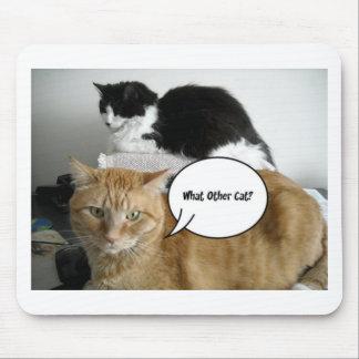 ¿Qué el otro gato? Humor del Tabby de /Orange Tapetes De Ratones