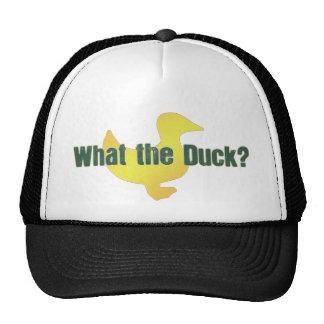 ¿Qué el pato? Gorro