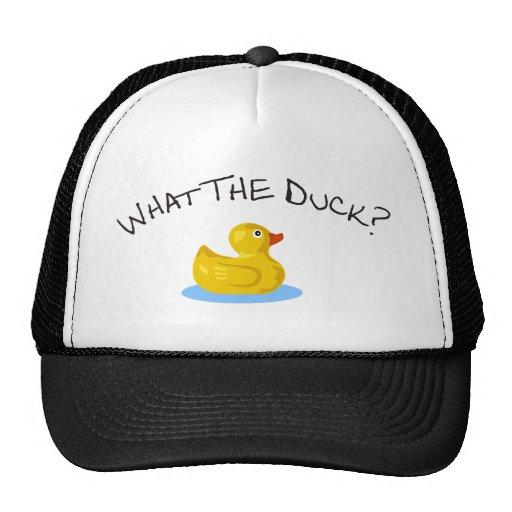 Qué el pato gorras de camionero
