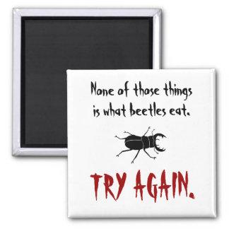 Qué escarabajos comen imán para frigorifico