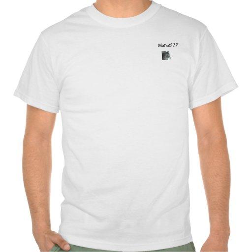 ¿Qué gato??? Camisetas