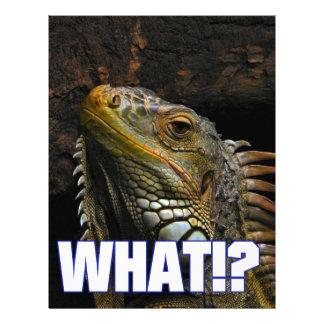 ¿Qué!? Iguana Membretes Personalizados