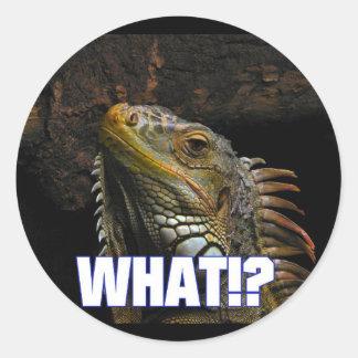 ¿Qué!? Iguana Pegatina Redonda