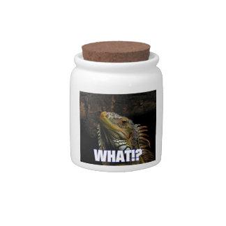 ¿Qué Iguana Platos Para Caramelos