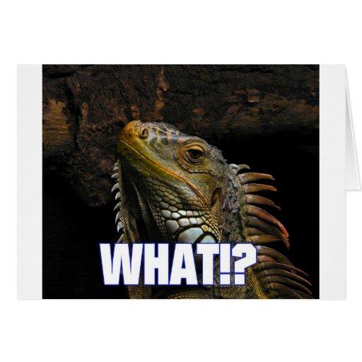 ¿Qué!? Iguana Tarjeta De Felicitación