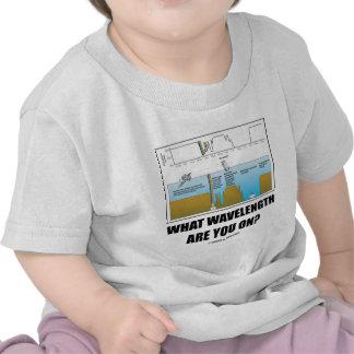 ¿Qué longitud de onda está usted encendido Humor Camiseta
