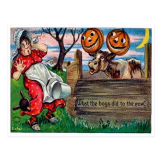 Qué los muchachos hicieron a las vacas la postal