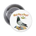 ¿Qué manera es hogar? Arte de la paloma Pins