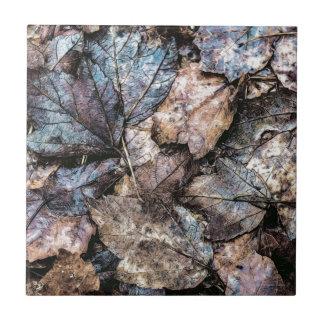 Qué naturaleza se ha ido azulejo cuadrado pequeño