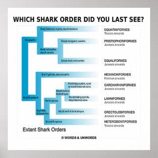 ¿Qué orden del tiburón usted último vio Impresiones